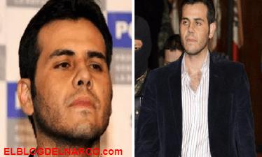 Terciopelo y cuello blanco, Vicentillo, el hombre que cambió al narcojunior mexicano