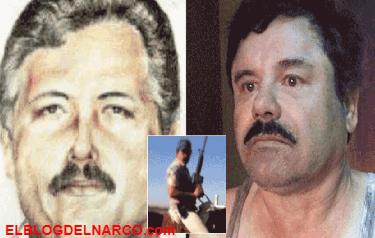 El Cártel de Sinaloa no resiente caída de El Chapo y ¿El Mayo toma el control total