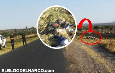 Graban hallazgo de sietes cadáveres abandonados en carretera de Jalisco (VÍDEO)