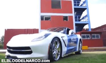 En Guanajuato, convierten autos deportivos decomisados al narco... ¡en patrullas!