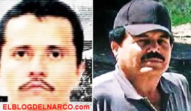 Ya llegamos por lo que nos pertenece... el CDS intensifica la ofensiva contra el CJNG para convertirse en la organización criminal más poderosa de México