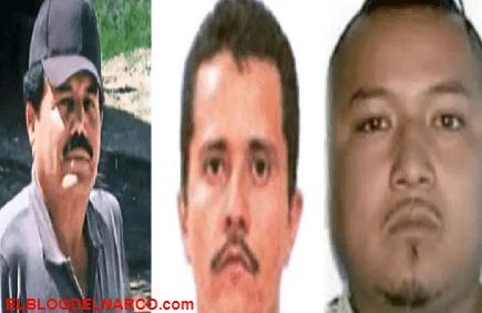 Narcotráfico en México, estas son las ciudades predilectas de familias de los narcos