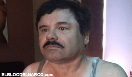 Indescifrables y costosos, los Blackberry del C.D.S que hundieron al Chapo Guzmán...