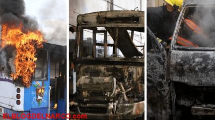 Extorsión, incendios y ejecutados, por qué los choferes se convirtieron en el blanco de los criminales en Acapulco