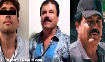 El Chapo Guzmán , El Mayo Zambada y Ovidio Guzmán tienen los mismos gustos...