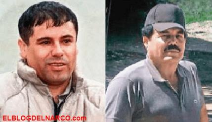El gran patriarca del Narco... 'Siempre habrá otro 'Chapo', pero nunca otro 'Mayo' Zambada'...