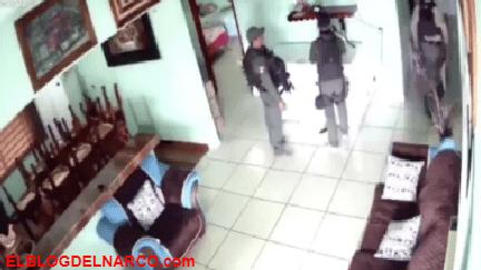 Revelan vídeo de lugar donde CJNG alimentaba con víctimas a leones, cocodrilos y cerdos