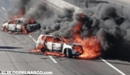 Van 413 aprehendidos, muchos vehículos quemados, inocentes muertos y ni las luces del Marro