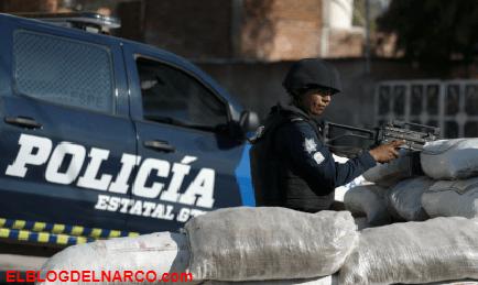Domingo de limpia y depuración de Plaza en Guadalajara