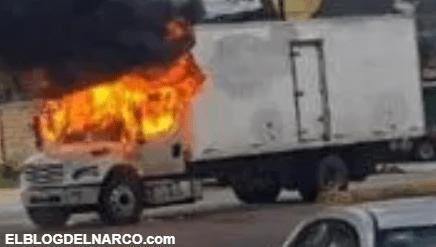 Estiman que 500 mil personas fueron desplazadas por el narco en México