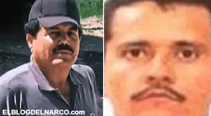 Las garras del Cártel de Sinaloa y el Mencho en Holanda, ponen en alerta a autoridades