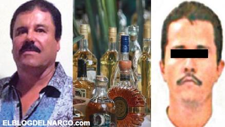 ¿Arellano Félix, el Chapo, CJNG usan tequileras para lavar dinero?