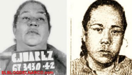 """""""La Nacha"""" y """"La Chata"""", las """"madres fundadoras"""" que inventaron todo en el narcotráfico mexicano"""