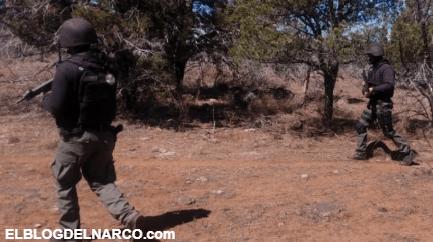 Se enfrentan sicarios de El Jaguar y de La Línea en la región del municipio de Madera, Chihuahua