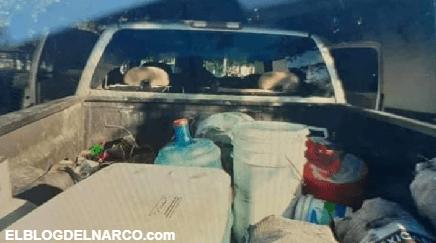 Sicarios atacan a Familia en Comales; Tamaulipas, mataron a la mama e hirieron a sus niñas