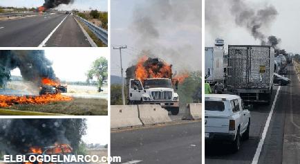 Guanajuatenses atrapados en la Narcoguerra entre El Marro y el CJNG
