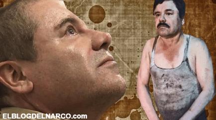 """""""Los Dormidos"""" grupo de sicarios que encabezó Joaquín Guzmán Loera antes de ser el Chapo"""