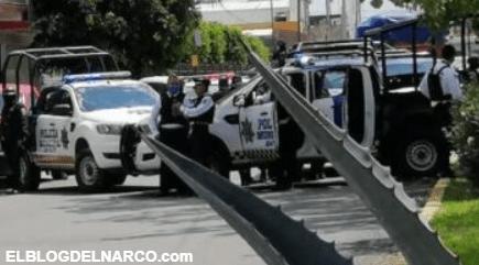 Ejecutan en Irapuato a exjefe del Mando Único en Villagrán, Guanajuato