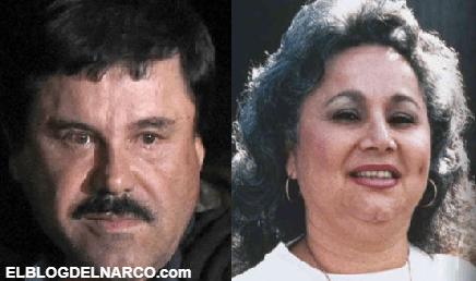 Del Chapo Guzmán a la Reina de la Cocaína, estos son los últimos grandes capos del narcotráfico