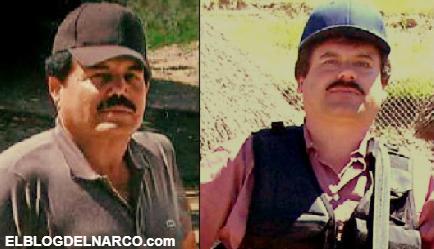 Del exagerado al discreto, la diferencia crucial entre El Chapo Guzmán y El Mayo Zambada