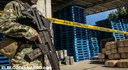 """""""Narcomarketing"""", la nueva estrategia de los narcos y cárteles mexicanos en TikTok"""