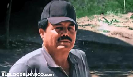"""""""El Mayo"""" Zambada Amo y señor del Cártel de Sinaloa, De lavacoches a líder del CDS"""
