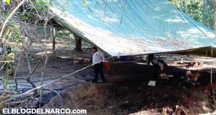 Elementos de la Policía de Guerrero desmantelan un 'narcolaboratorio' en Petatlán, Guerrero