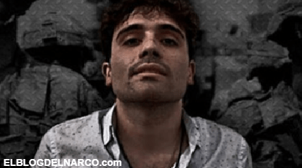 Ovidio Guzmán hijo de Joaquín Guzmán Loera El Chapo es el nuevo rey del Fentalino