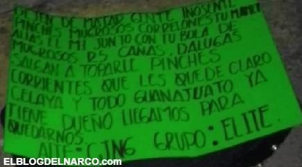 Video donde el CJNG interrogó a DIANA antes de ejecutarla, descuartizarla y regarla en Guanajuato
