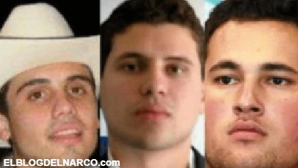 'Los Chapitos' disputan BC con 'El Mayo' Zambada, reclutan a gente del 'Mencho' para enfrentarlo
