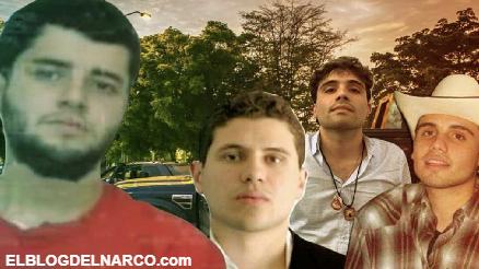 """El Nini el Sicario de """"Los Chapitos"""" causa guerra con el """"Mayo"""" Zambada (VIDEO AUDIO)"""