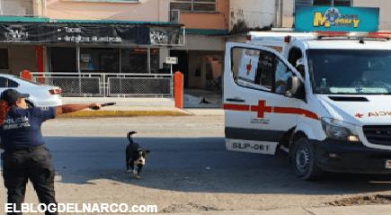 Terror y sangre en Tamuín, se registraron tres balaceras en la zona Centro (VIDEO)