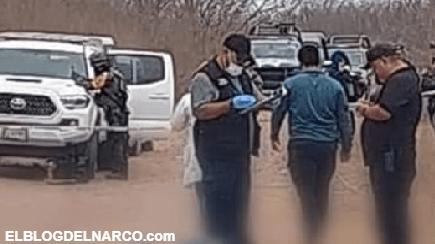Imparable la inseguridad en Sinaloa, la violencia de El Mayo y Los Chapitos