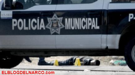 Los Cabos brazo armado del CJNG donde ordenaron mas de 150 ejecuciones en Tijuana