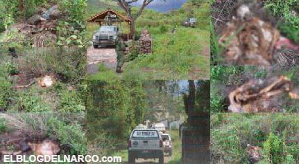 Encuentran 20 cuerpos en Michoacán, Fiscalia solo habla de siete