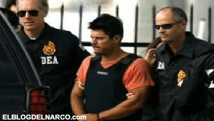 Resurgimiento del Cártel de Tijuana, Eduardo Arellano Félix y El Tigrillo quedaron libres tras sapear