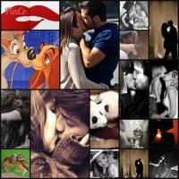 ¿Cómo crear un 'collage' con tus imágenes de pinterest? Cómo mola