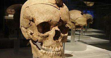 Una de las cabezas cortadas de Ullastret