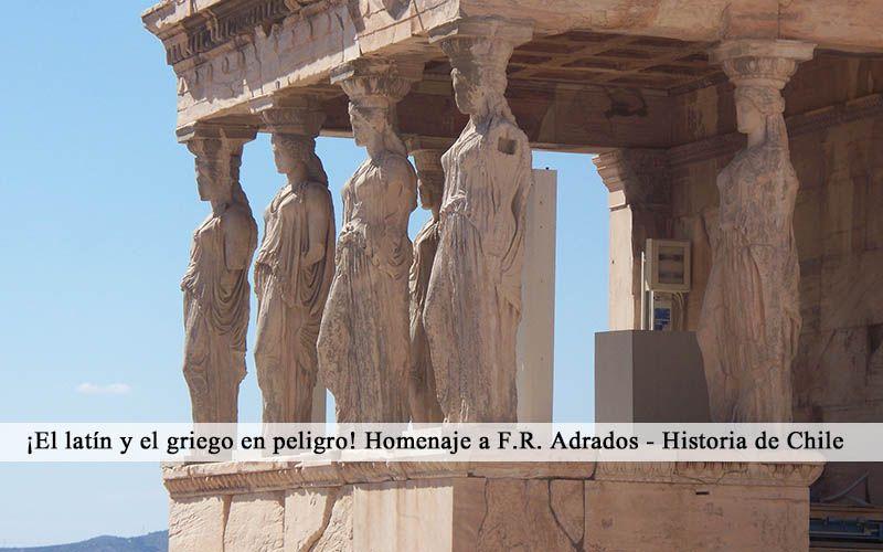El latín y el griego en peligro