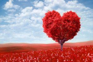 arbol-corazon-amor-700x465