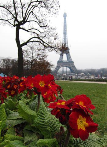 Torre Eiffel desde la plaza de Trocadero