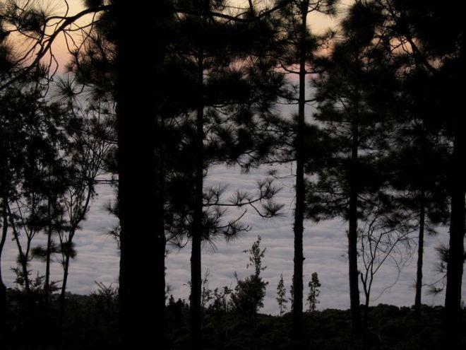 islas-canarias-dia4-