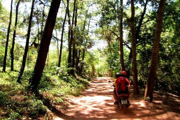 Tour en moto por los alrededores de Hue