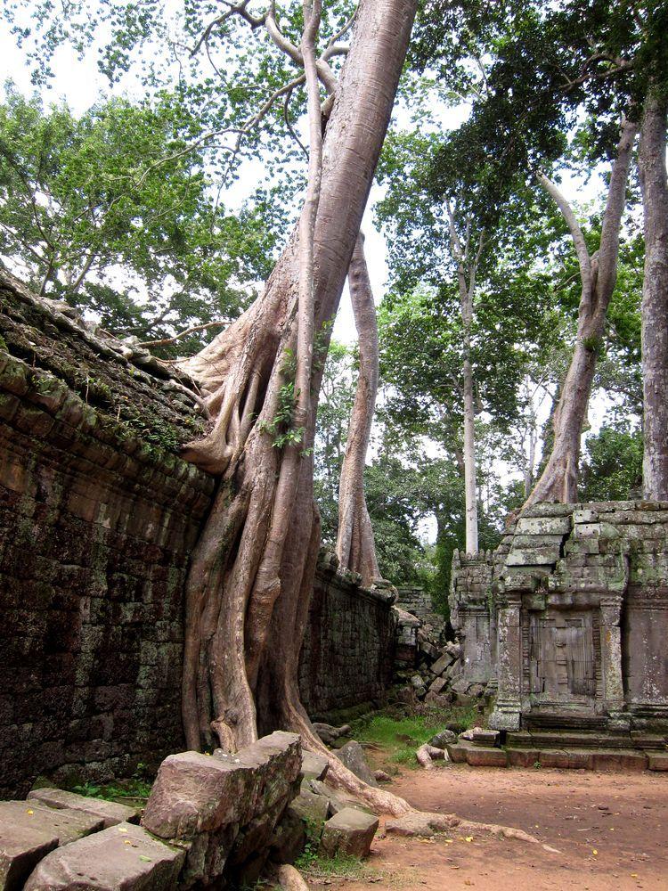 camboya-05-06-07-templos-de-angkor-70