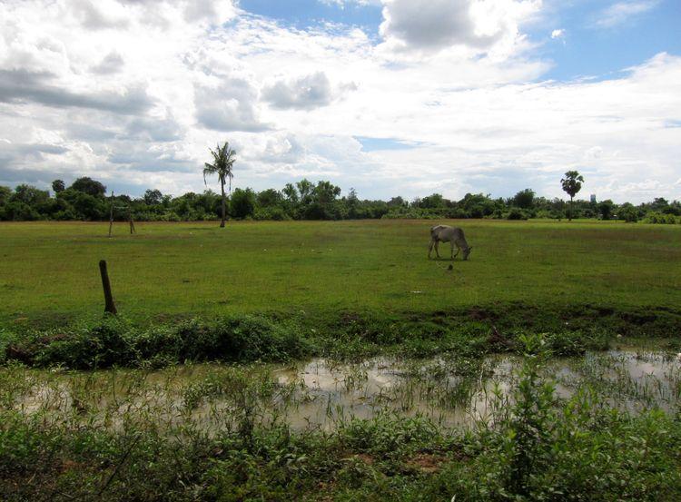 camboya-y-vietnam-12-frontera-03