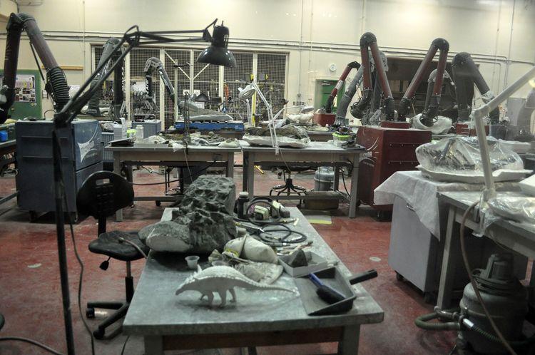 Museo Tyrrell de Drumheller