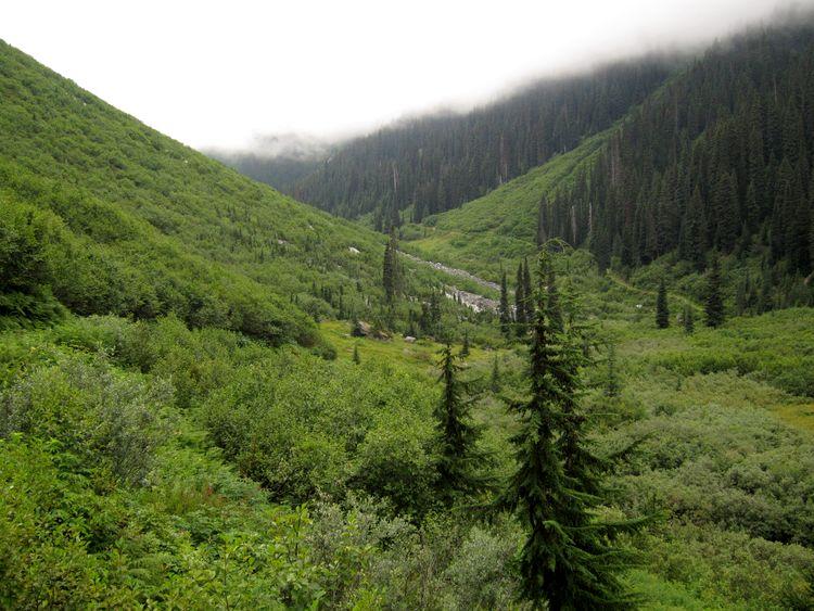 canada-07-glacier-national-park-09