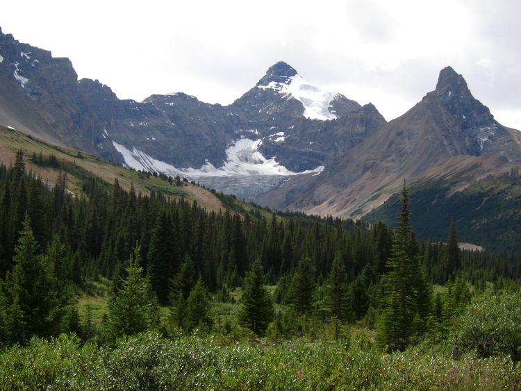 canada-08-ruta-por-icefields-parkway-18