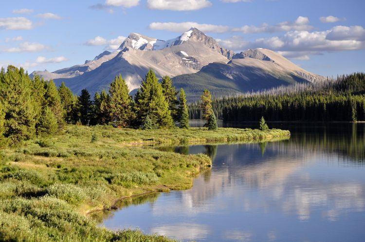 Qué ver en el Parque Nacional de Jasper