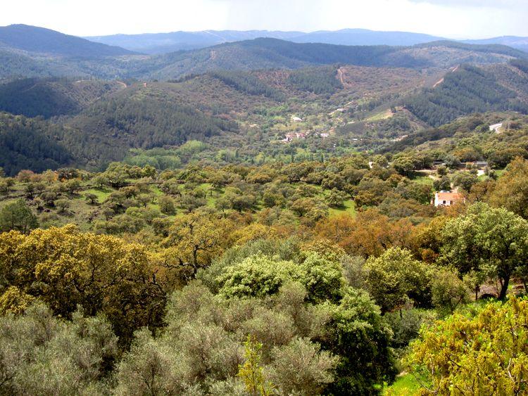 Sierra de Aracena en Huelva